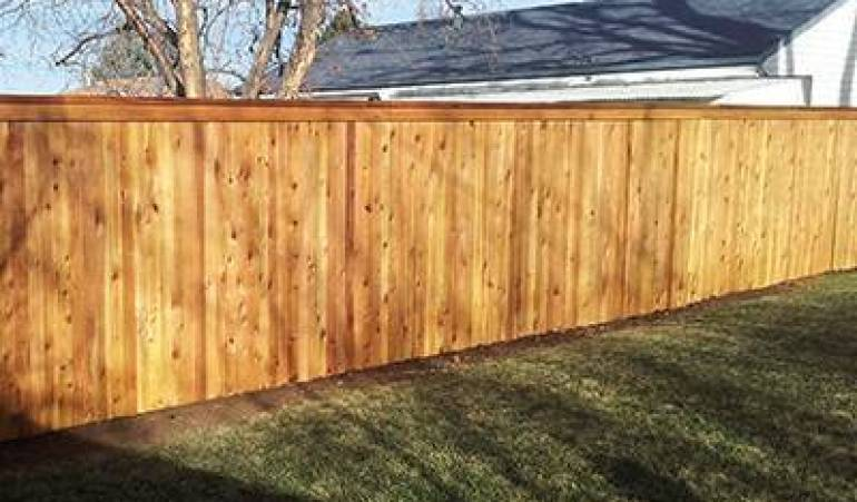 Need Privacy? Choose a Cedar Privacy Fence!