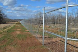 Hunting Season is Near-Do You Have A Game Fence-Texas Fence and Iron