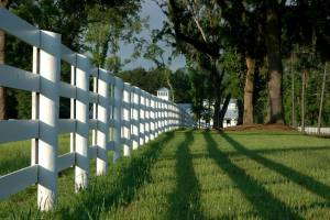 Corral Fencing For Horses- Texas Fence and Iron Co.
