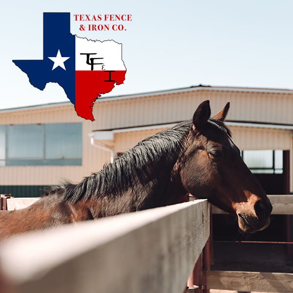 Everything You Need to Know About Equine Fencing