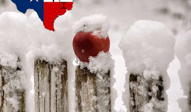Can I Install a Fence During the Winter?