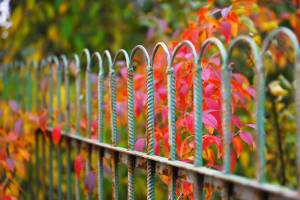 Why Fall is the Perfect Time to Replace Your Fence - Texas Fence and Iron